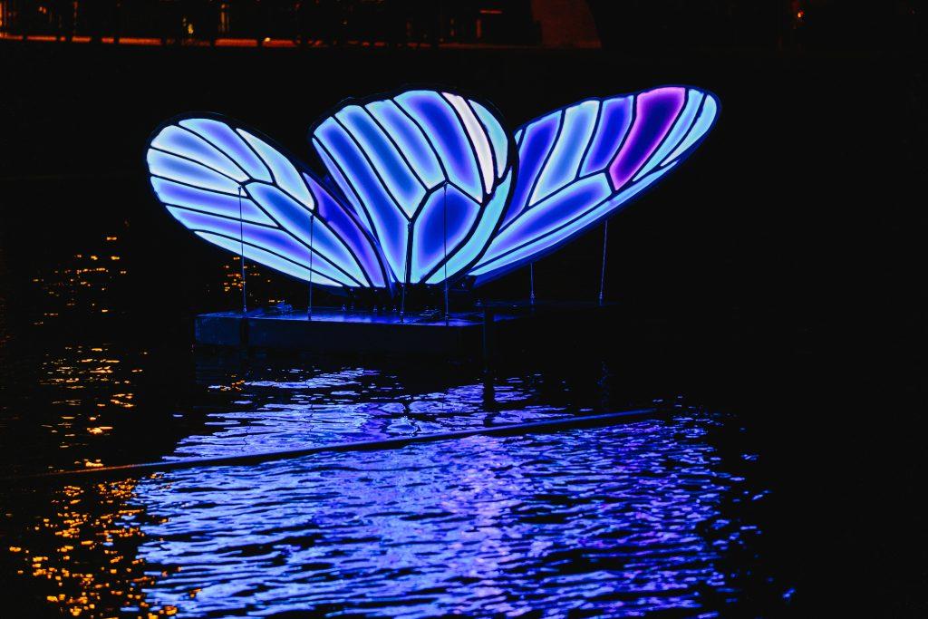Butterfly Effect tijdens Amsterdam Light Festival 2019